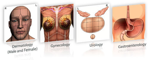 ELLKAY's LKConnect displays different body maps for the specialties listed: Dermatology (Male and Female) Gynecology/OB/GYN Urology GI/Gastroenterology